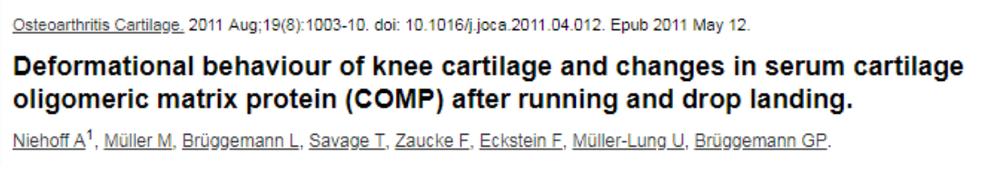 Cartilage 2.png