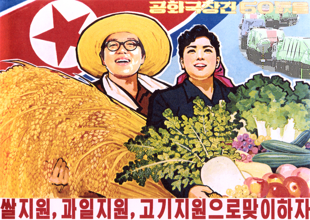 """Welcome the 50th anniversary of the DPRK with food aids from the world!"""