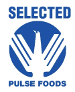 Selected-Pulse-Logo.png