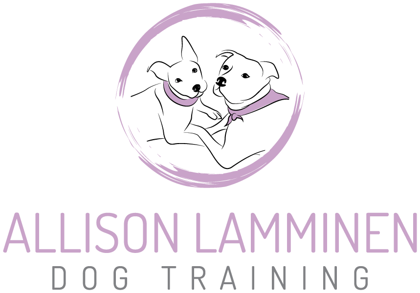 Allison Lamminen Dog Training