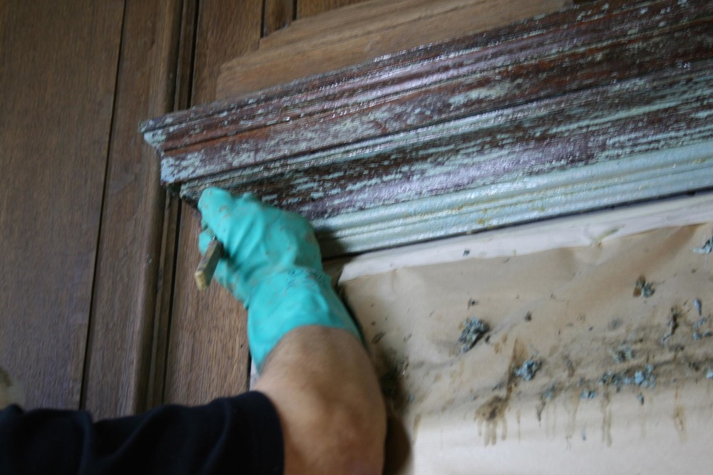 Removing paint from an oak cornice in the oak panelled drawing room in kent