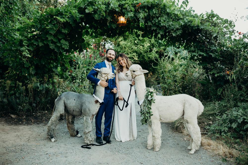 YULIYA & ARON // CAMPOVIDA WEDDING