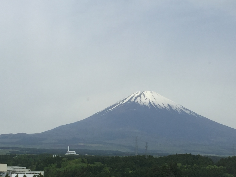 The Great Mt. Fuji