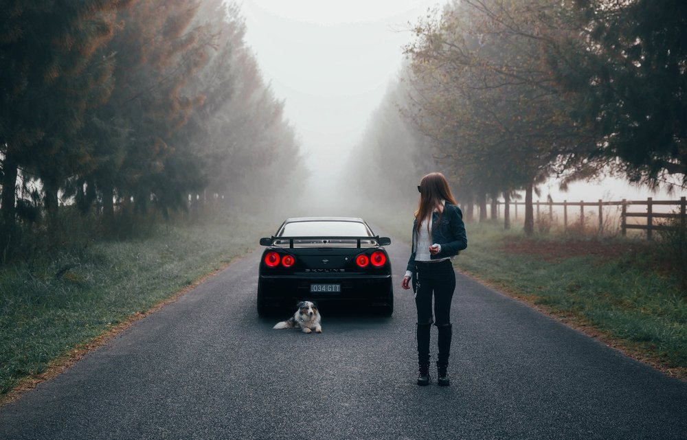 And last but not least.... Probably my all time favourite photo. Ever. Me with my R34 and Haylee's dog at Richmond Lowlands, which was taken on my camera and then edited by me. It was the morning after I had sliced my thumb open after cutting up some cardboard (I place a sheet in my orders to protect the stickers from bending), and I could barely drive my car or take photos, but I really wanted to create some cool content with the moody background. I didn't know how any of the shots turned out until I drove home, but once I loaded them up on my computer, I was so incredibly happy and the entire shoot turned out to be the most memorable shoots ever.
