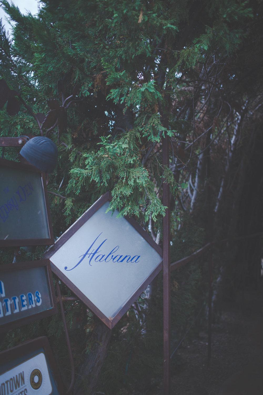 Stay_Driven_Habana-48-48.jpg