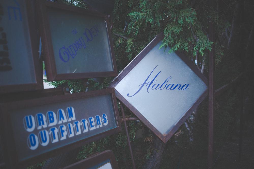 Stay_Driven_Habana-47-47.jpg