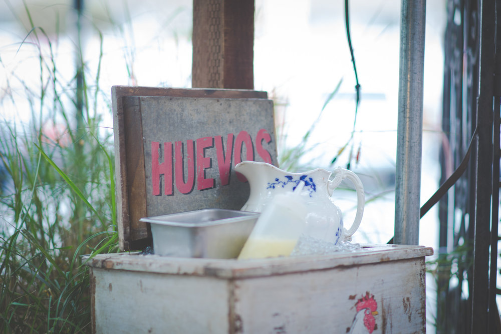 Stay_Driven_Habana-13-13.jpg