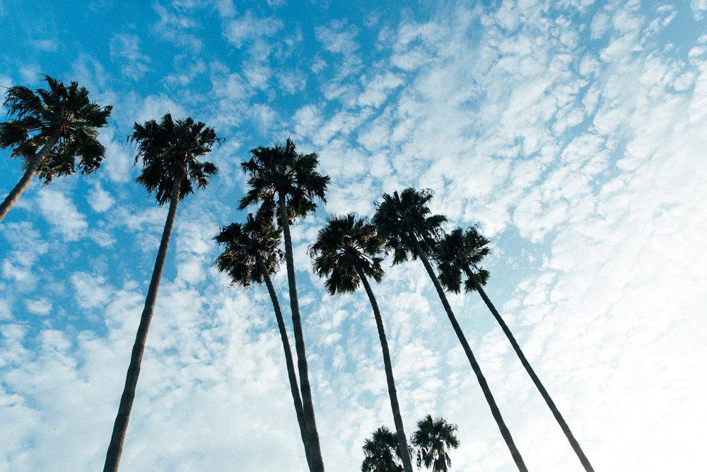 LIDO BOTTLE WORKS - LOCATION: NEWPORT BEACH