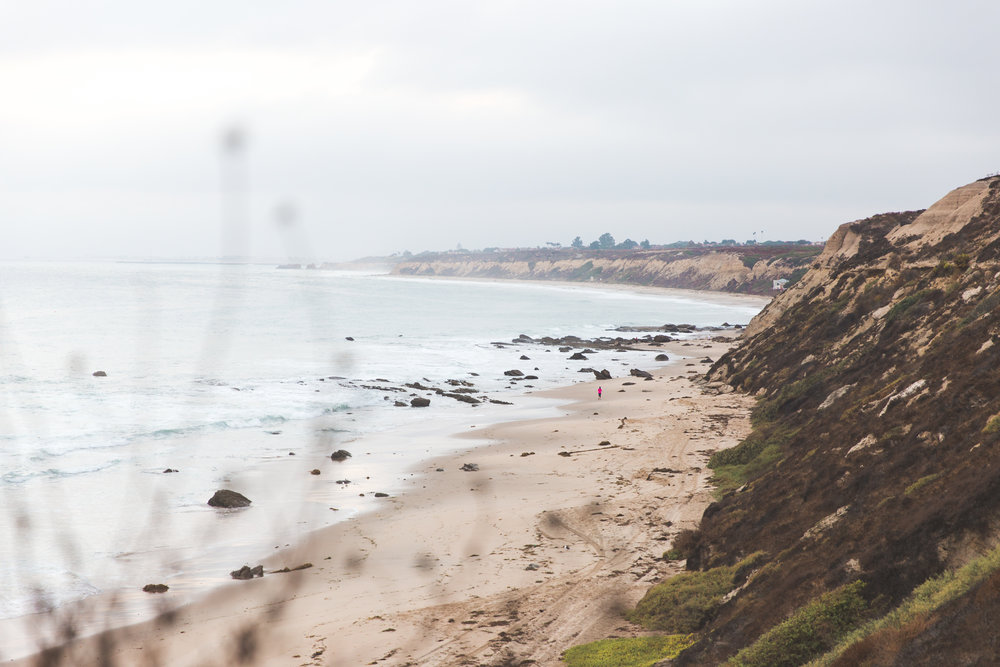 Stay_Driven_Crystal_Cove_Landscapes-5.jpg
