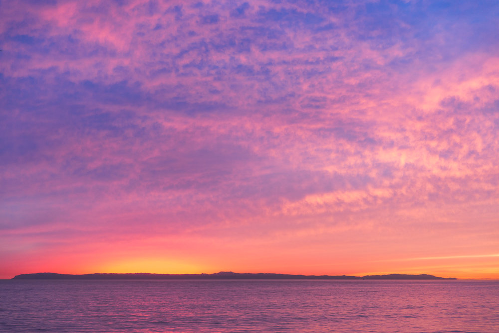 Babettes_Takeaway_Sunset_Jasmine-5.jpg