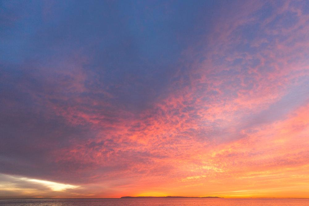 Babettes_Takeaway_Sunset_Jasmine-7.jpg
