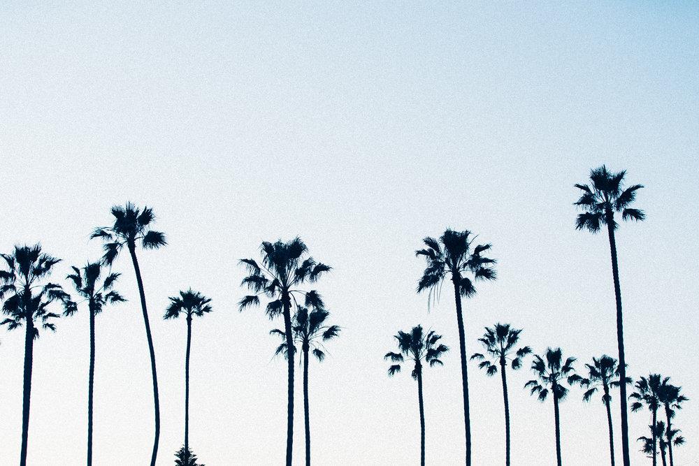 ABE1_Balboa_Sunset-11.jpg