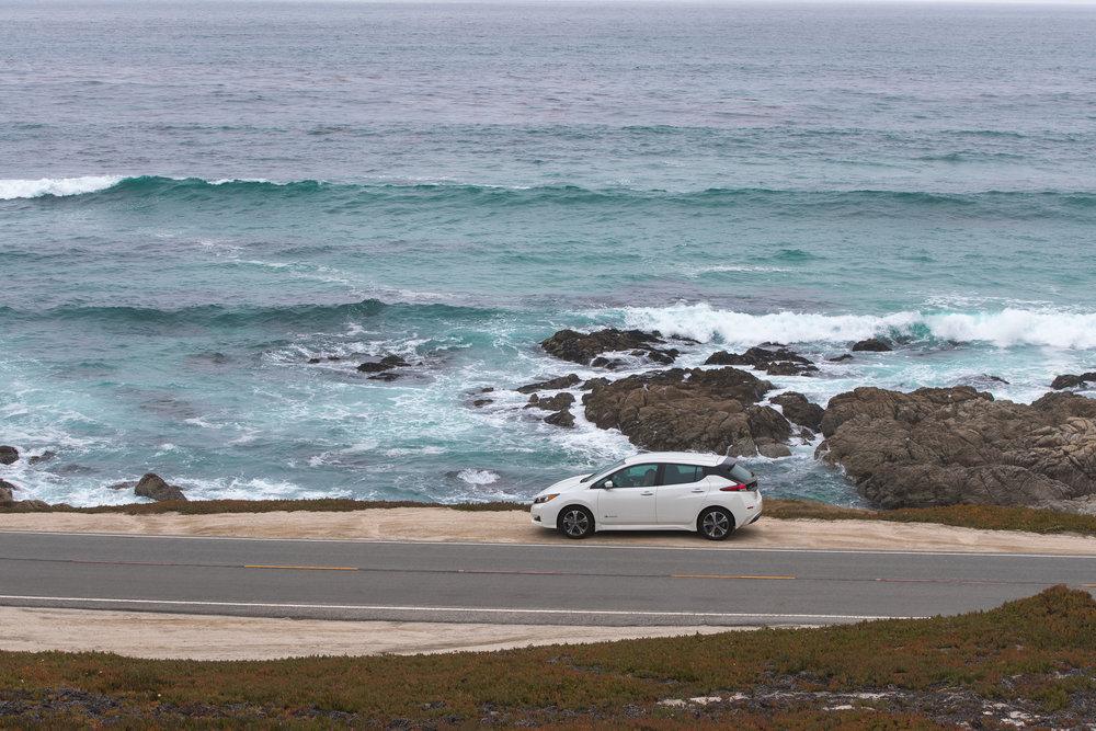 ABE1_LEAF_Monterey-17.jpg