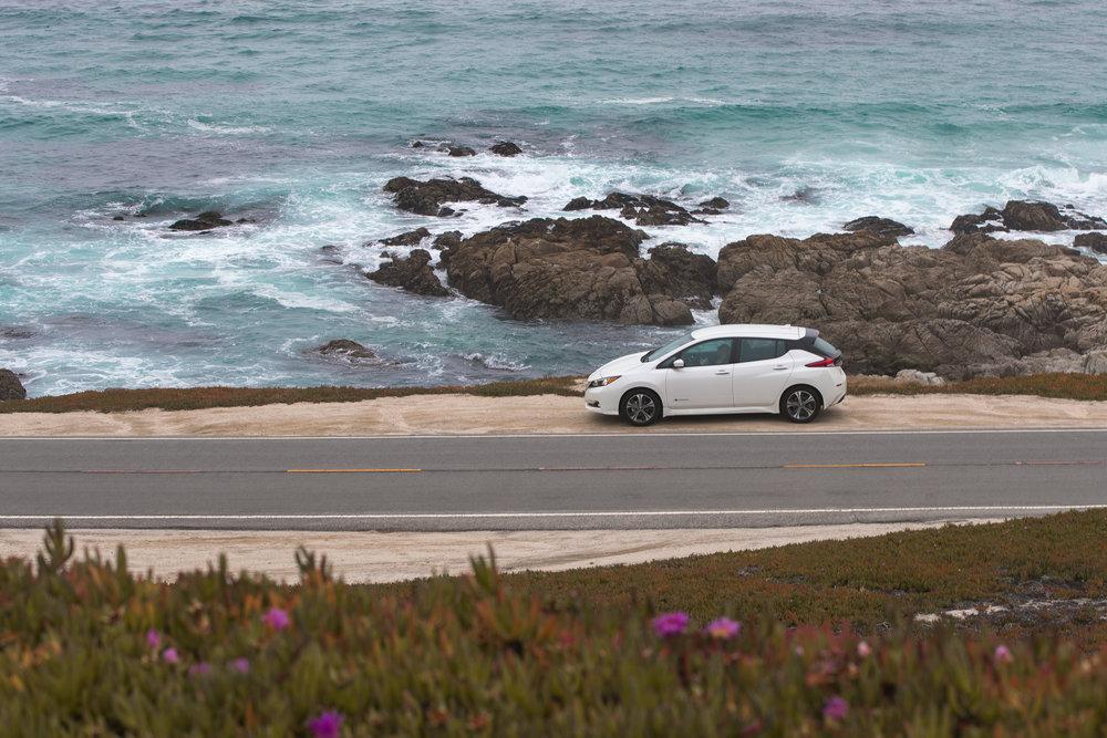 ABE1_LEAF_Monterey-15.jpg