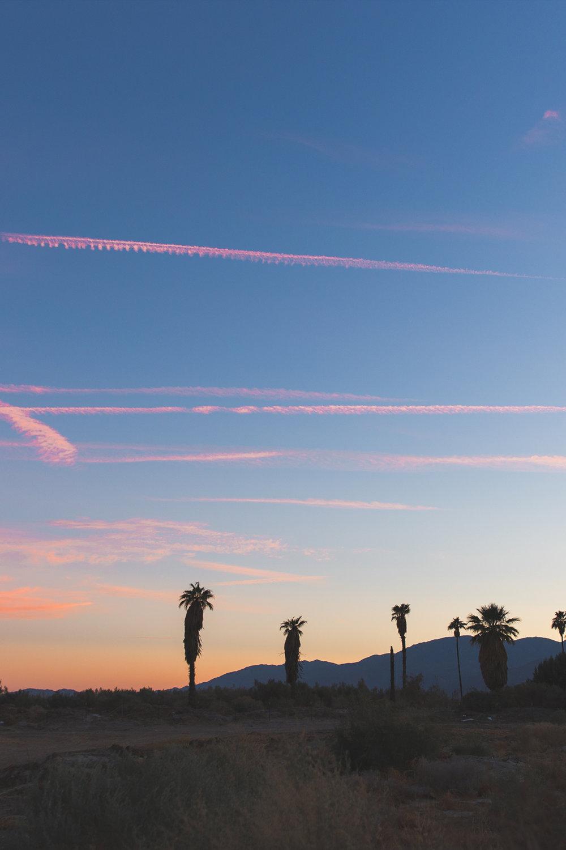 Stay_Driven_Sunset_15.jpg