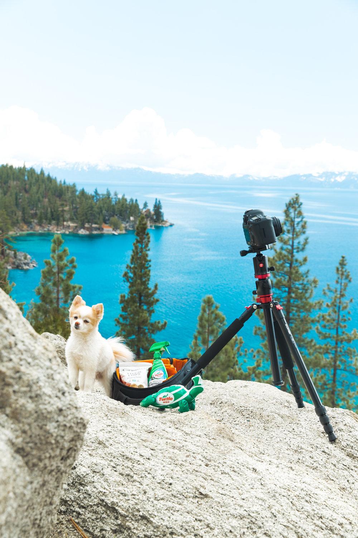 ABE1_Lake_Tahoe_May_2018-24.jpg