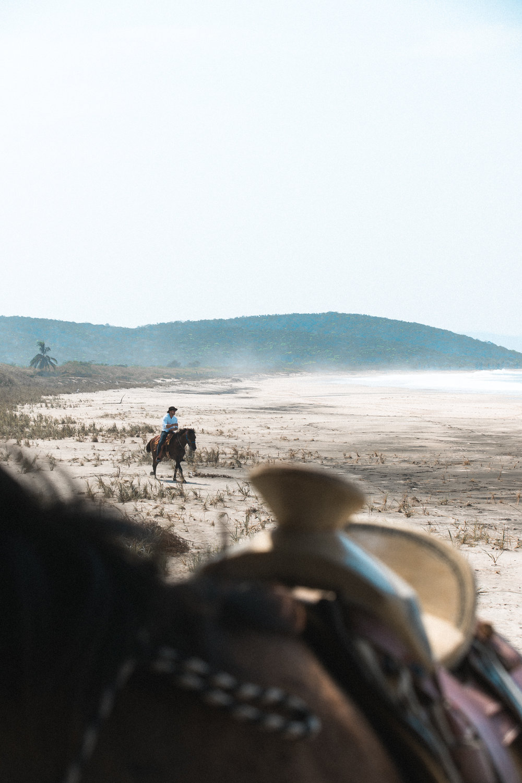 ABE1_Mexico_Horse-32.jpg