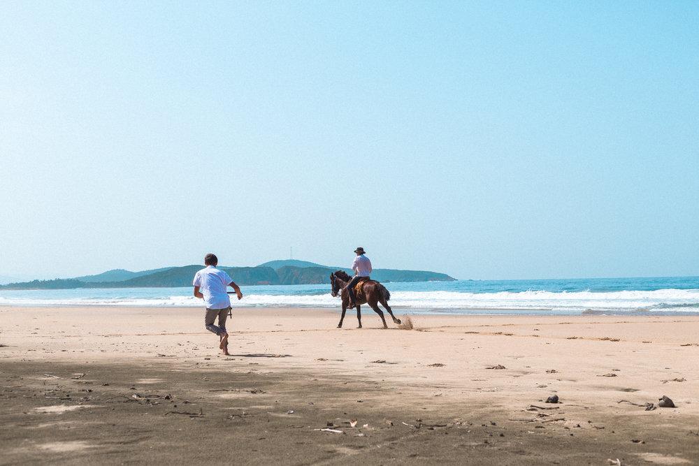ABE1_Mexico_Horse-45.jpg