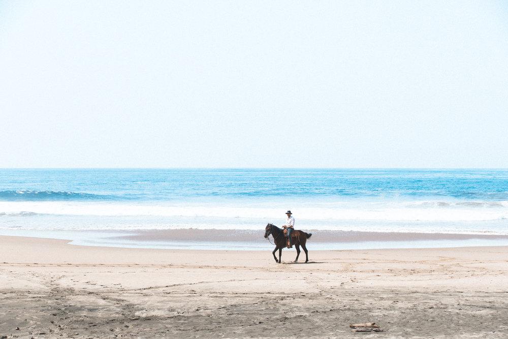 ABE1_Mexico_Horse-30.jpg