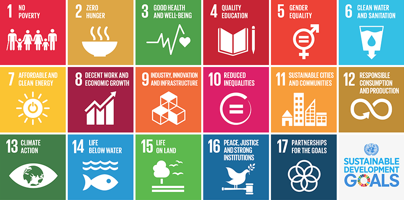The 2030 SDGs. Image credit: https://www.un.org/sustainabledevelopment/