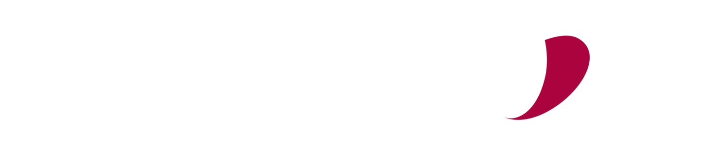 Westminster Wealth Management