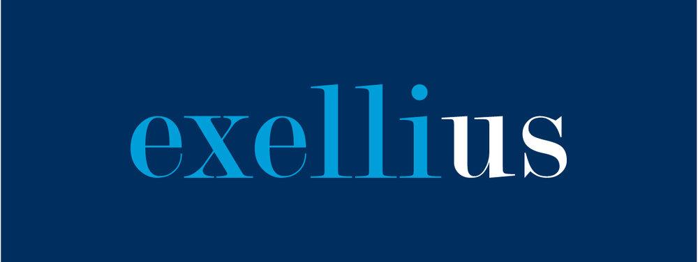 blanco-case-exellius-logo-cyaan.jpg