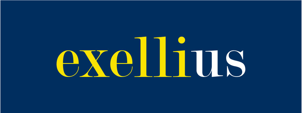 blanco-case-exellius-logo-yellow.jpg