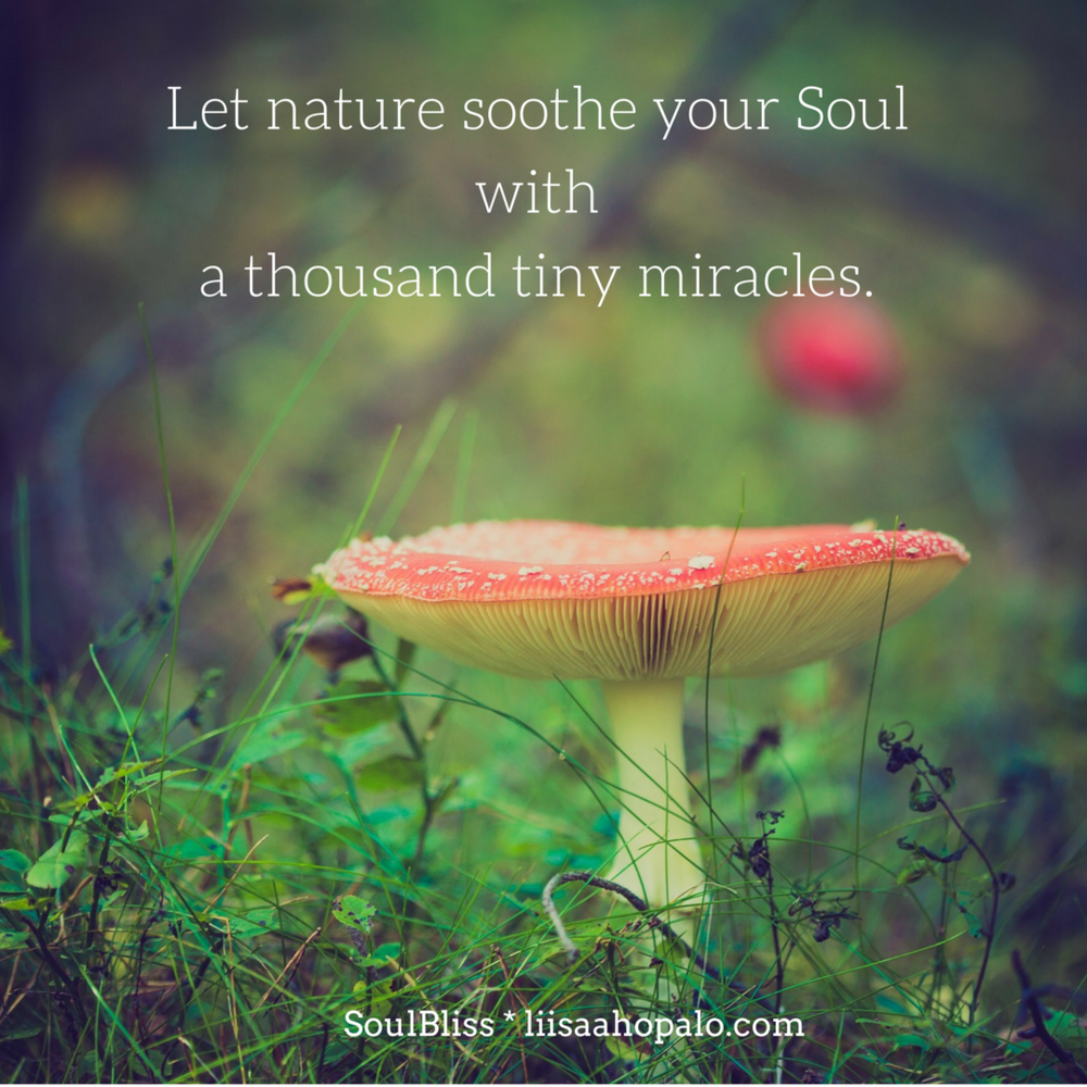 What a joy to walk in natureand wittnessa thousand tiny miracles!.png