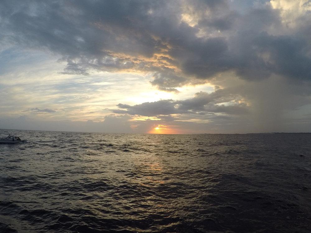 Beautfiul sunset to go along with our whale shark