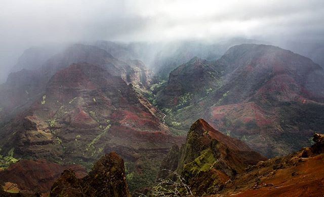 Waimea Canyon lookout in Kauai. . . . #kauai #hawaii #waimea #waimeacanyon #canyon #hawaiilife #hiking #hikehawaii