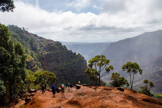 Waimea Canyon trail. The waterfall is just down the trail to the left here. Rained almost the whole time, making for lots of sliding in mud. Couldn't have been more fun! . . . #waimea #waimeacanyon #hawaii #kauai #hawaiilife #hiking #hikehawaii #canyon