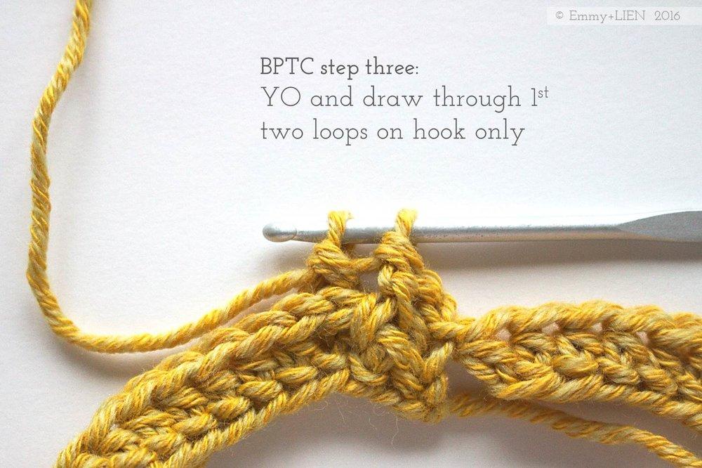 BPTC.step3.jpg