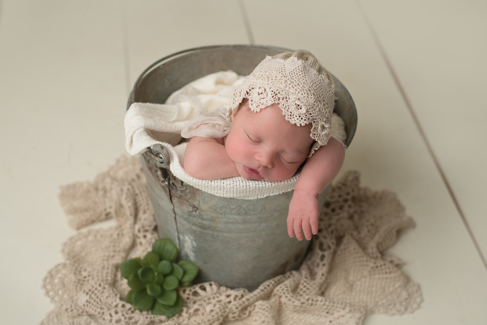 NH newborn photography