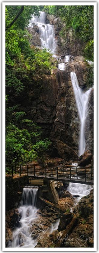 Botanical Garden waterfall 04