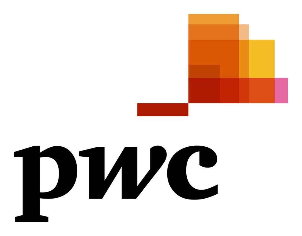 Price Waterhouse Cooper Corporate Headshots Photography