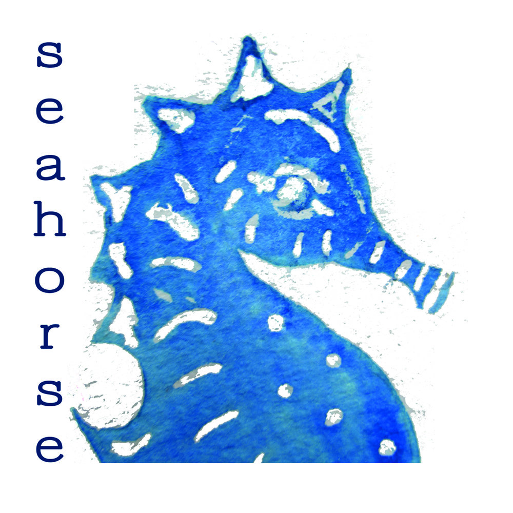 seahorse card front.jpg