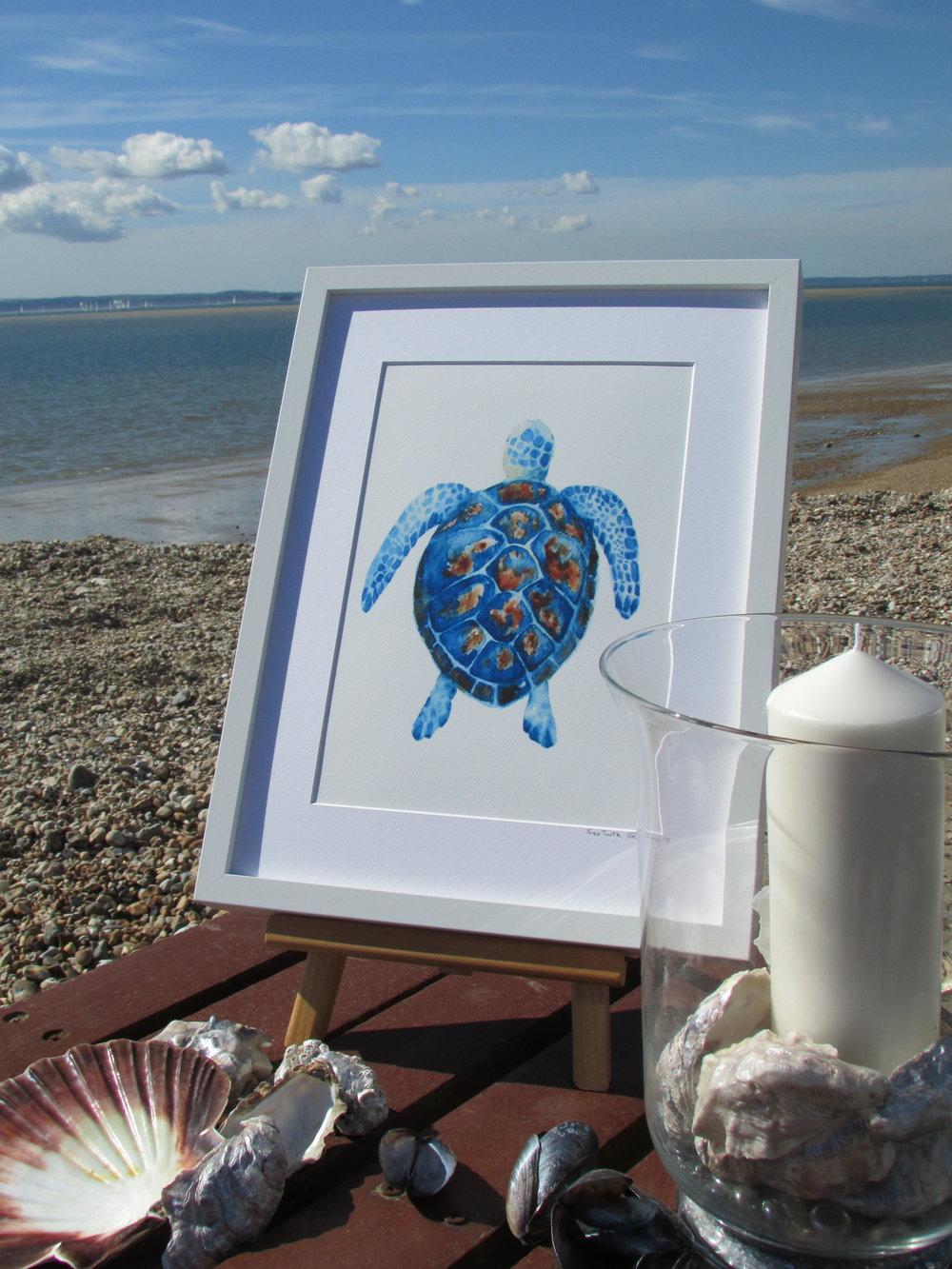 Sea Turtle hurricane lamp shells HI.JPG