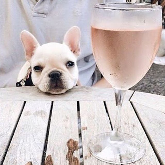 Friday Feeling 🍷 #todrinkornottodrink #tgifridays #mood 📷 @lipsylondon
