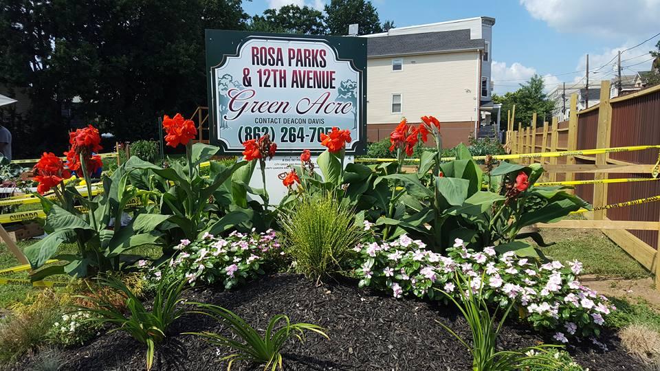 garden image C.jpg