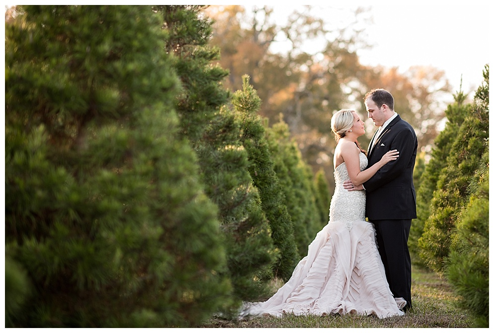 Emily_ChristmasTree_Farm_Arkansas_Wedding_Photographer_04.jpg
