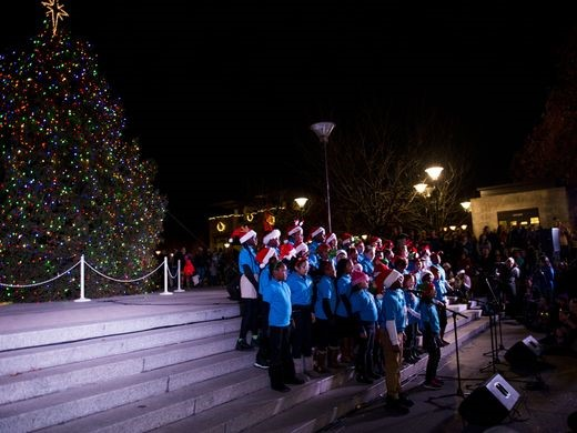 Tree lighting in Nashville, tennessean.com Erica Brechtelsbauer/The Leaf-Chronicle