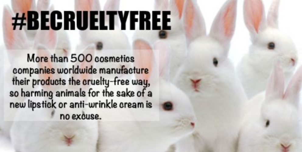 http://www.crueltyfreekitty.com/list-of-cruelty-free-brands/
