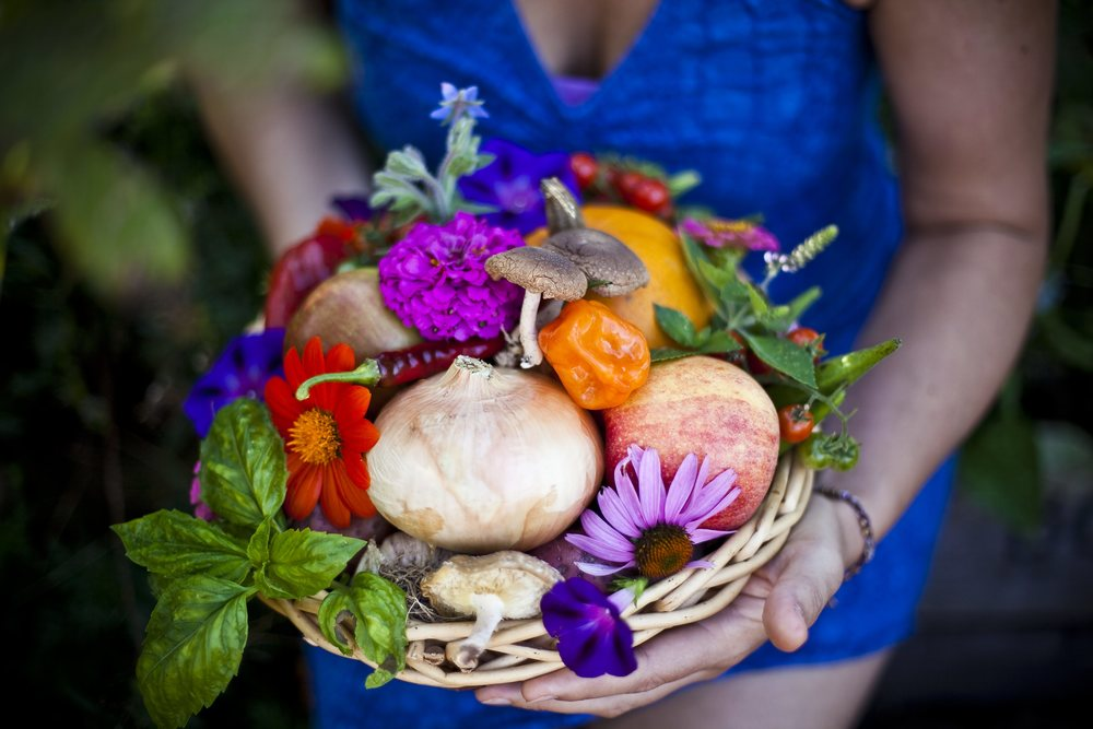 gorgeous garden basket harvest mary catherine penn.jpg
