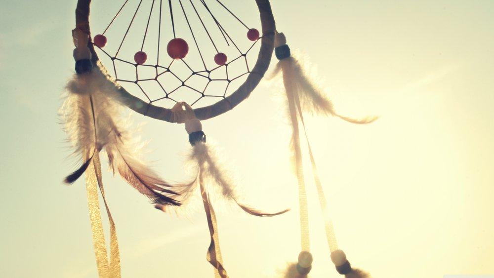 sunny-summer-catcher-feathers.jpg