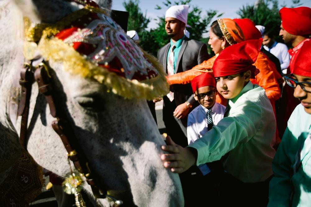 Sikh-wedding-Photographer-Meadowlark-Botanical-Gardens-Hilton-McLean-Tysons-Corner_0018.jpg