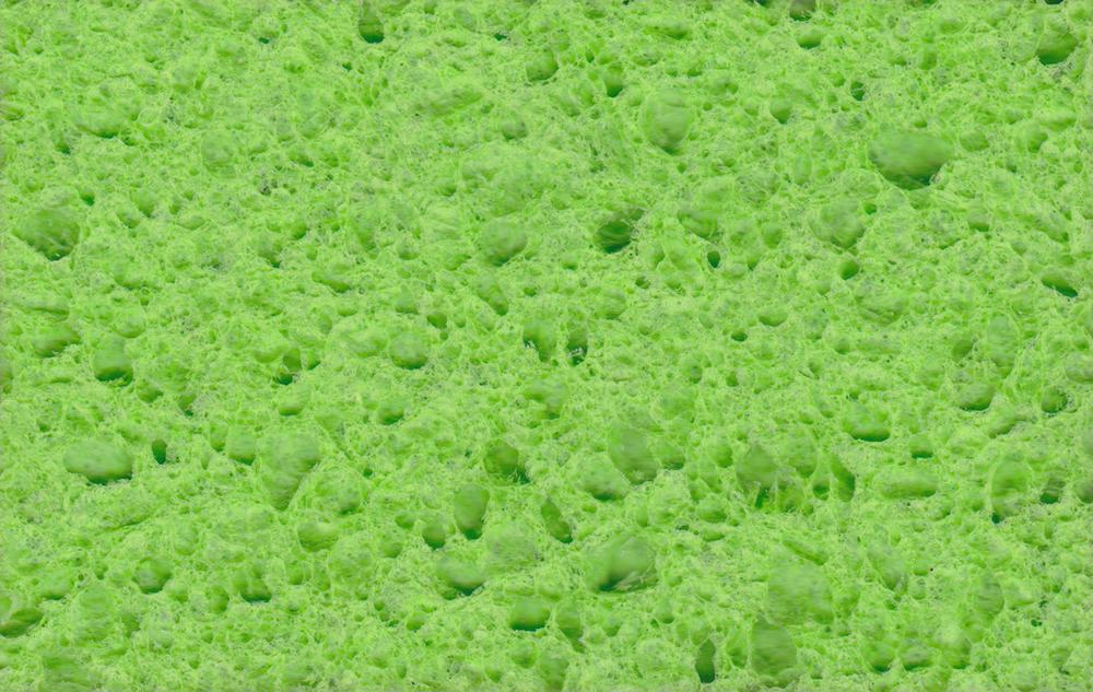 green sponge.jpeg