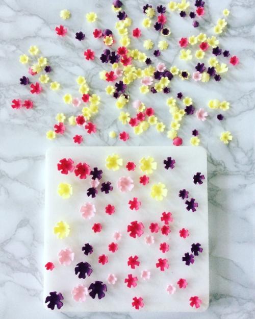CONFETTI FLOWERS.jpg
