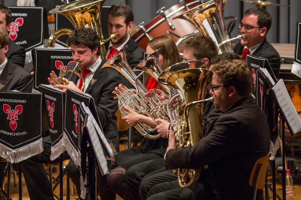 20160521_Brassband Abinchova_Jubila¦êumskonzert im Pfarreiheim in Ebikon_18.jpg