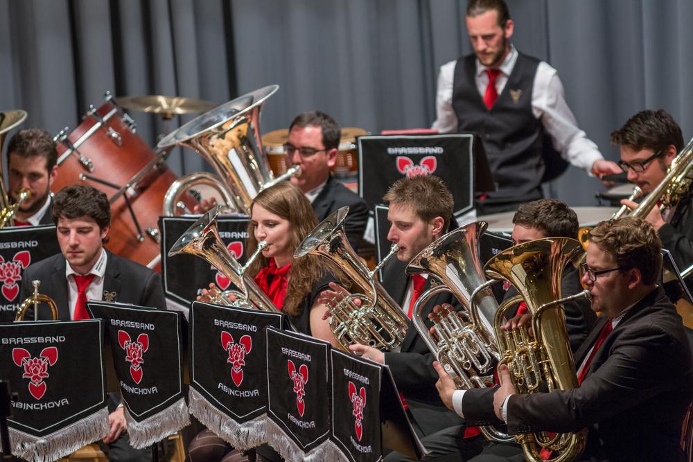 20160521_Brassband Abinchova_Jubila¦êumskonzert im Pfarreiheim in Ebikon_26.jpg