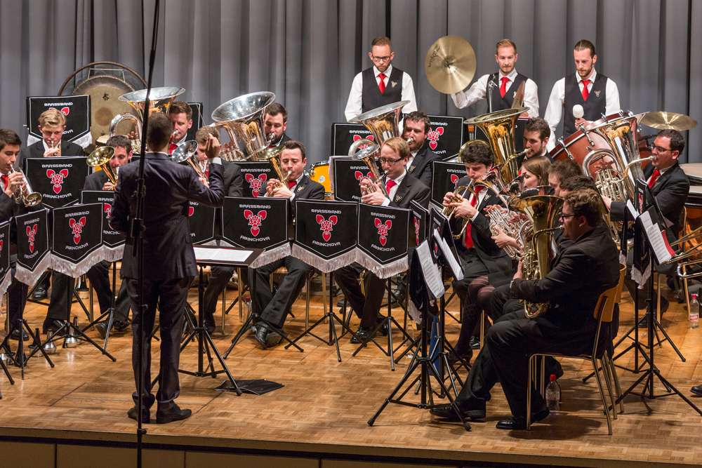 20160521_Brassband Abinchova_Jubila¦êumskonzert im Pfarreiheim in Ebikon_32.jpg